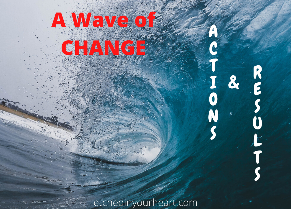A Wave Of Change – Actions & Results